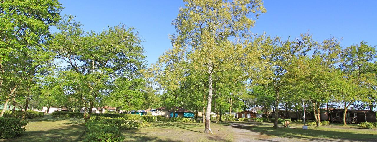 camping Le Galan Castets des Landes en Aquitaine
