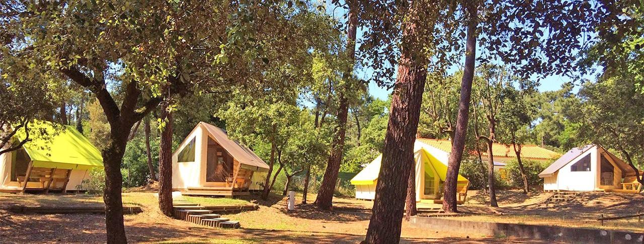 Camping Saint Tro Park Oléron freeflowers