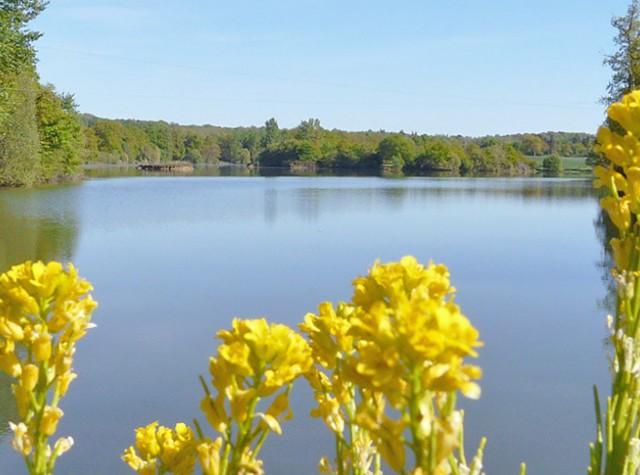 Camping Lac aux Oiseaux Lac de Bannac-4