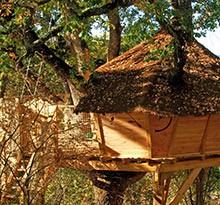 Flower Camping La Beaume cabane dans les arbres